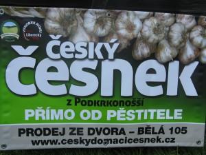 Český česnek z Podkrkonoší